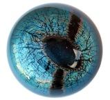 Abe's eye.