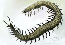 One of Huante's first concepts of the Hammerpede.
