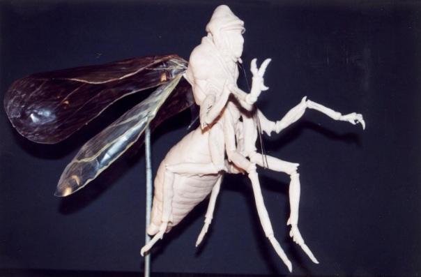 MimicFIRSTmaquette
