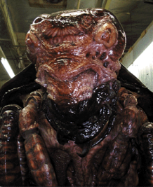 Close-up of the Mimic female's head, without the face-mask.