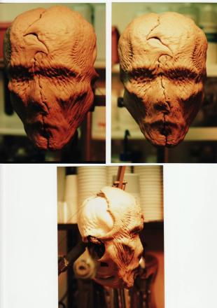 The face-mask of the Mimic Juvenile.