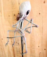 Pod Alien #1.