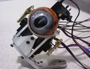 The finished eye mechanism, still devoid of the 'eyelid' membrane.