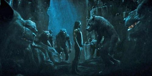 Werewolvesmeetin