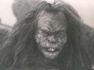 One of the troll make-ups.