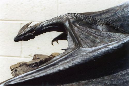 Dragonmaquetteddd