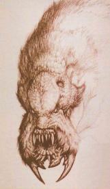 Kothoga head concept by Mark 'Crash' McCreery.