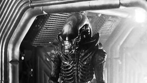 Aliennoir