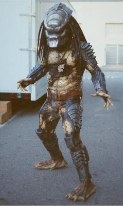 Predator2Boar