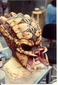 Predator2snakehead