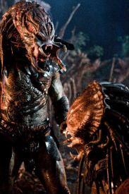 PredatorsBerserkerfaceoff5