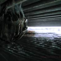 Concept art of a Skitter in hybernation.