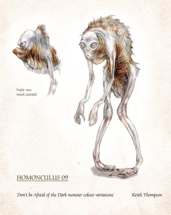 Homunculusthompsonconc