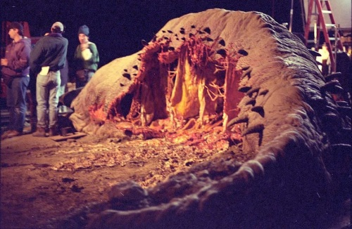 Dead Graboid on set.