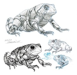 Toadconcepts