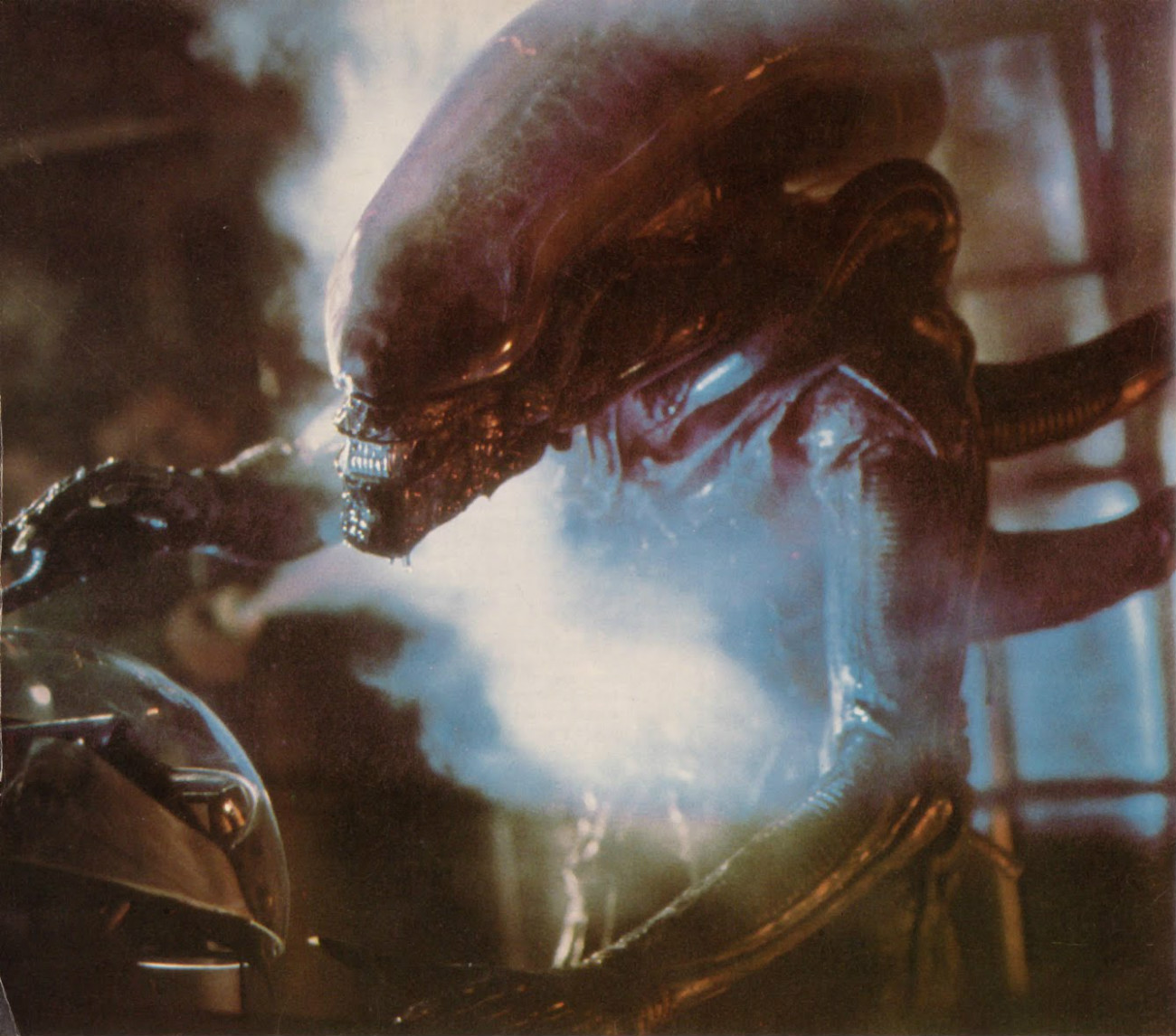 aliens 1986 facehugger