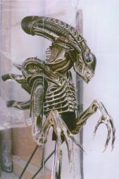 Aliensheropupsz
