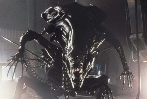 aliensqueenawesomewow