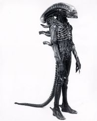 Aliensuito3