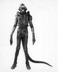 Aliensuito5