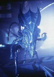 AliensQueenpuppse