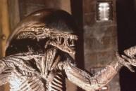 Alien3suito_rsz