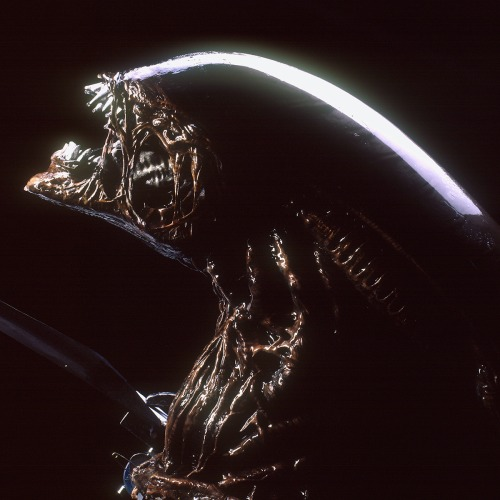 Alienresheadroar