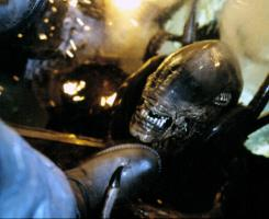 ALIEN: RESURRECTION, alien monster, 1997. TM and Copyright © 20th Century Fox Film Corp. All rights reserved..