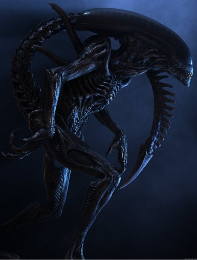 Promotional stills featuring Stephane Paris' digital Alien.