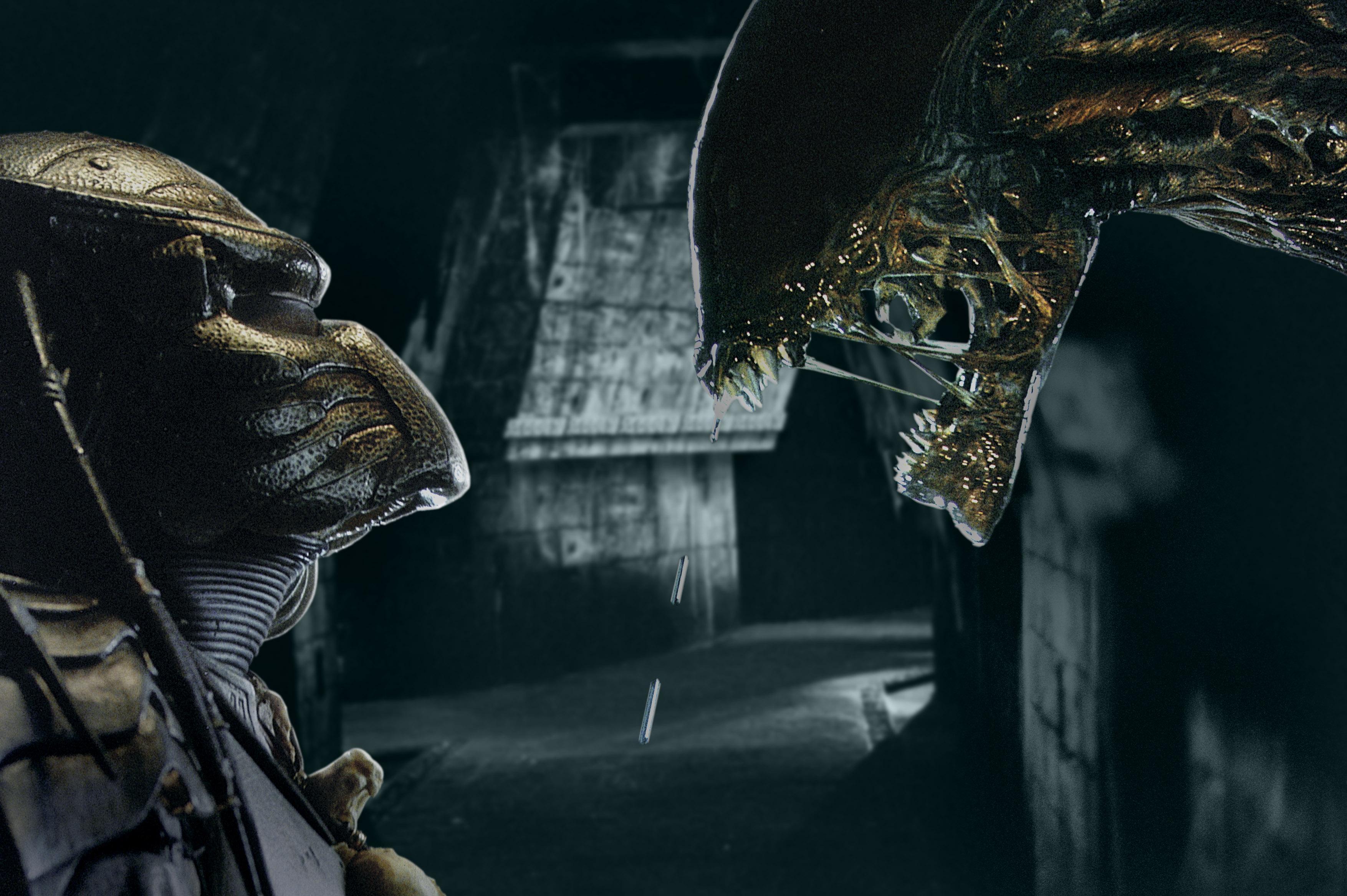 alien vs predator 1 movie - photo #14