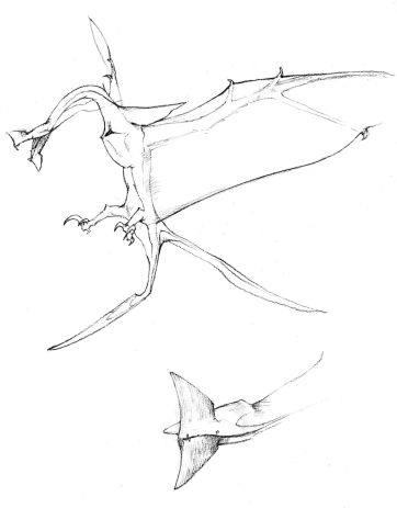 Leonopteryxbarlowe00