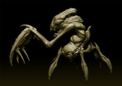 The mantis-lobster digital model.