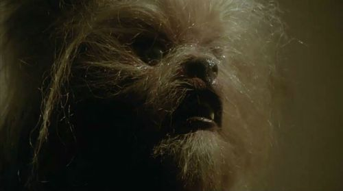 Howlingkarenwolf