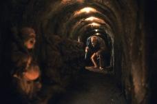 bigtroublewildmancorridor