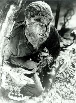 wolfman1941wood
