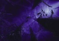 aragogschildren