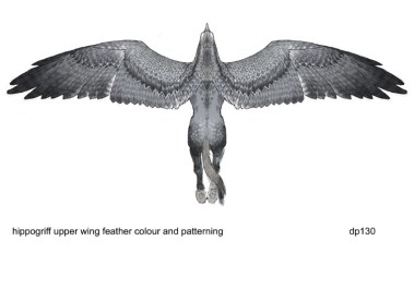 Buckbeakcolourwing