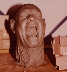 Thingnorrisheadsculpt